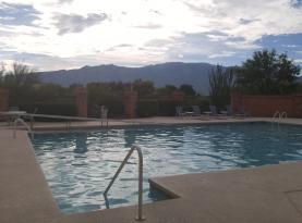 Take a morning dip at the Desert Oasis pool