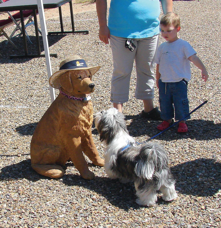 Dog Club – Fido's Friends